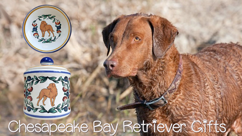 Chesapeake-Bay-Retriever-Gifts.jpg